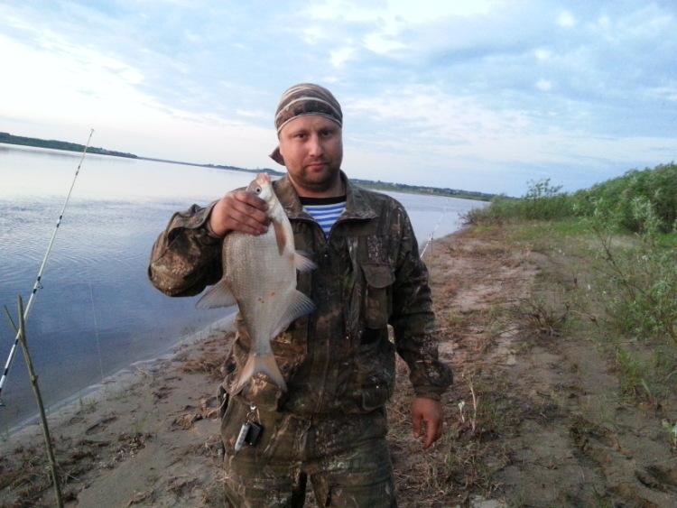 рыбалка на шерне весной
