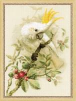 """Набор для вышивки крестом  """"Белый какаду """" размер: 30*40 см; канва: 14 Aida Zweigart белая."""