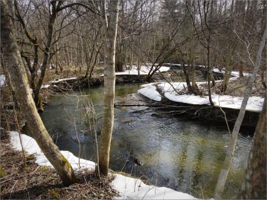 Картинки весны на реках