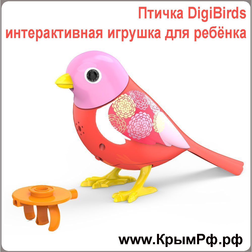 ������������� ������ DigiBirds - ������� ��� ������
